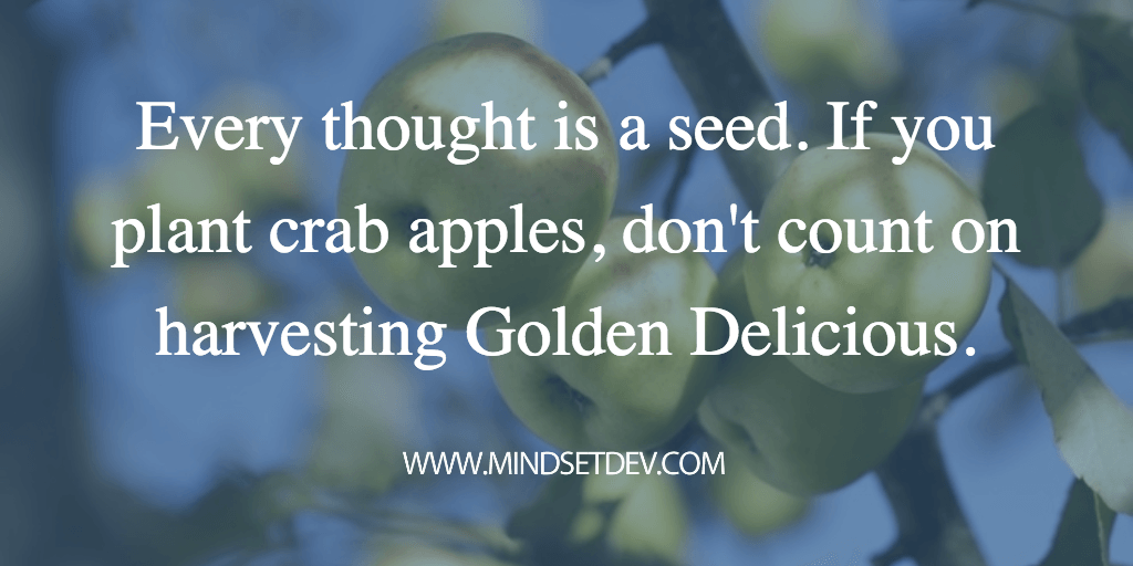 every thought is a seed